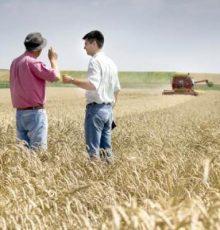 Servidores do Ministério da Agricultura têm direito à INDENIZAÇÃO DE CAMPO