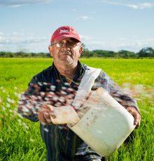 Servidor do Ministério da Agricultura teve direito à revisão da aposentadoria reconhecido